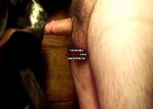 Filthy anal bestiality sex action with my husband